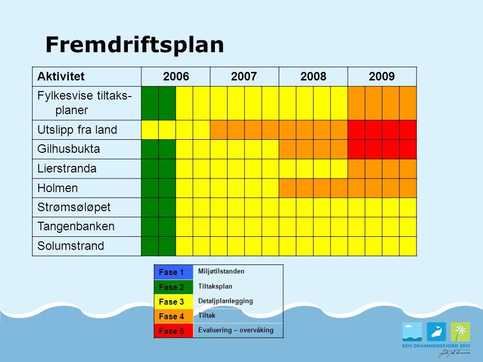 Fremdriftsplan Aktivitet2006200720082009 Fylkesvise tiltaks- planer Utslipp fra land Gilhusbukta Lierstranda Holmen Strømsøløpet Tangenbanken Solumstr