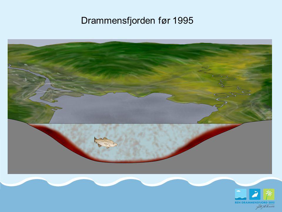 Langsiktige mål:  Forurenset sjøbunn skal ikke hindre rekreasjon og friluftsliv, havnedrift og båtdrift eller fritidsfiske  Forurenset sjøbunn og aktiviteter i indre Drammensfjord skal ikke føre til negativ påvirkning av økosystemet