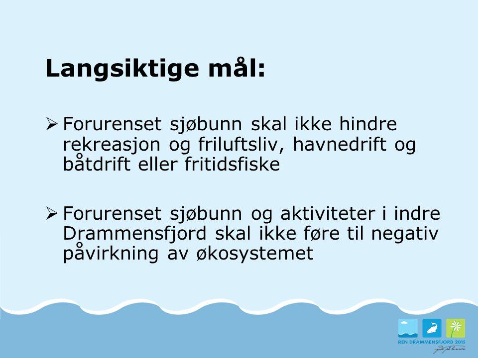 Delmål og ambisjonsnivå  Det skal være trygt å spise fiskekjøtt fra lokale fiskearter  Helse- og miljøskadelige stoffer skal ikke medføre skader på dyre- og planteliv i Drammensfjorden  Helse- og miljøskadelige stoffer skal ikke medføre helserisiko ved bading i Drammensfjorden