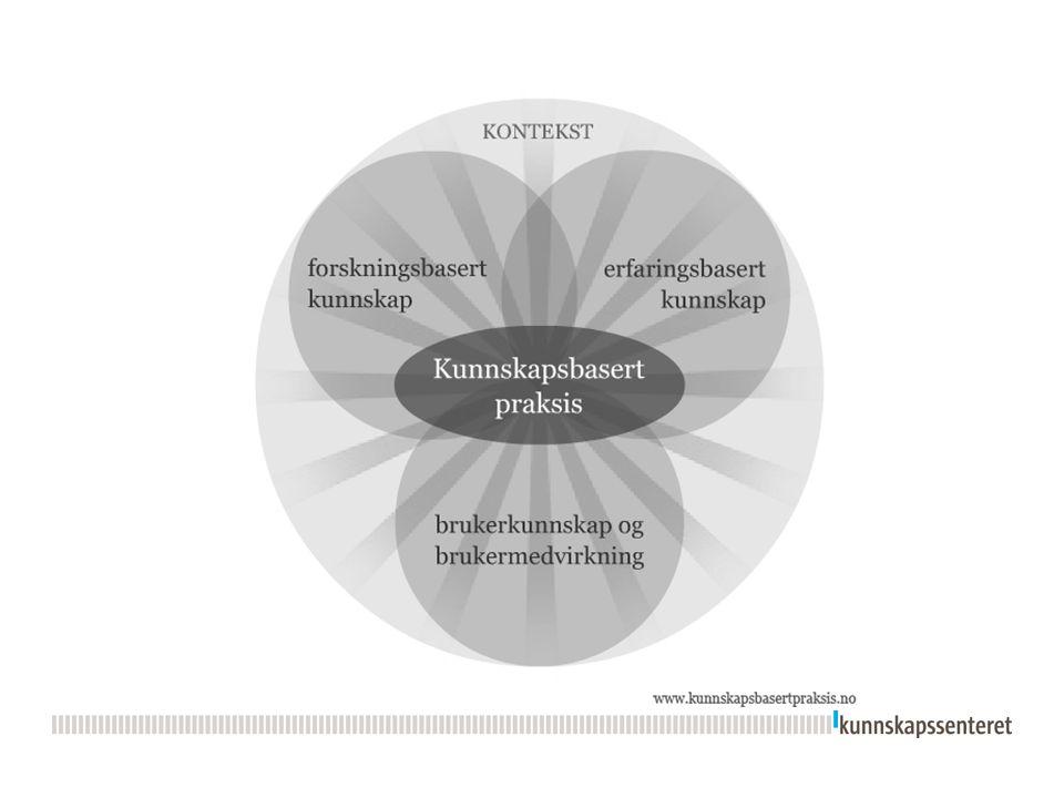 De 6 trinnene i kunnskapsbasert praksis  Refleksjon over egen praksis  Formulere spørsmål (kjernespørsmål)  Finne forskningsbasert kunnskap (litteratursøk)  Kritisk vurdere forskningen  Anvende forskningsbasert kunnskap med erfaringsbasert kunnskap og brukerens behov  Evaluere egen praksis