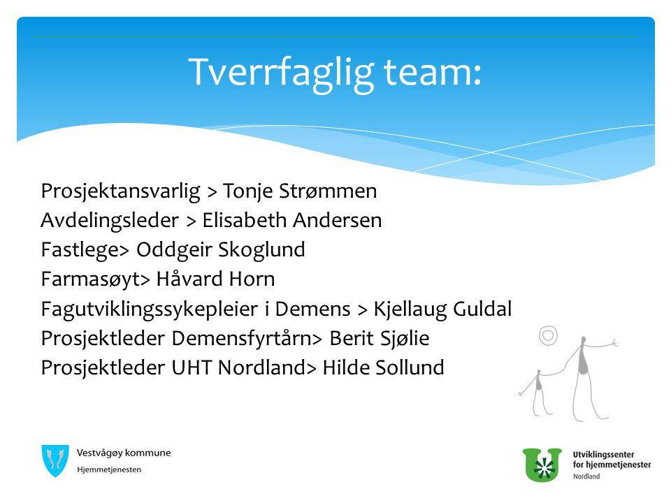 Prosjektansvarlig > Tonje Strømmen Avdelingsleder > Elisabeth Andersen Fastlege> Oddgeir Skoglund Farmasøyt> Håvard Horn Fagutviklingssykepleier i Dem