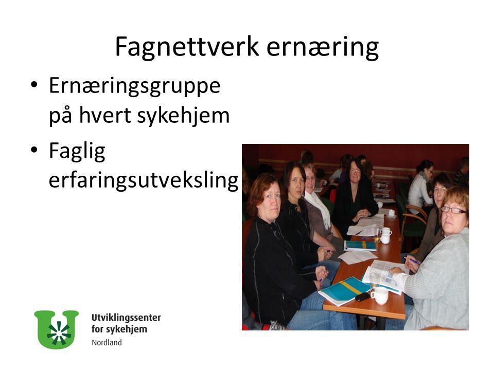 Fagnettverk ernæring Ernæringsgruppe på hvert sykehjem Faglig erfaringsutveksling