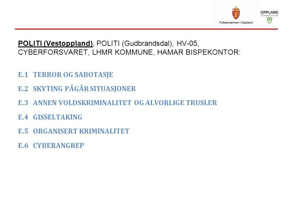 POLITI (Vestoppland), POLITI (Gudbrandsdal), HV-05, CYBERFORSVARET, LHMR KOMMUNE, HAMAR BISPEKONTOR: E.1 TERROR OG SABOTASJE E.2 SKYTING PÅGÅR SITUASJ