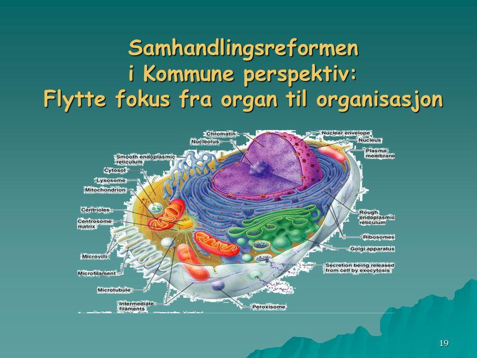 19 Samhandlingsreformen i Kommune perspektiv: Flytte fokus fra organ til organisasjon