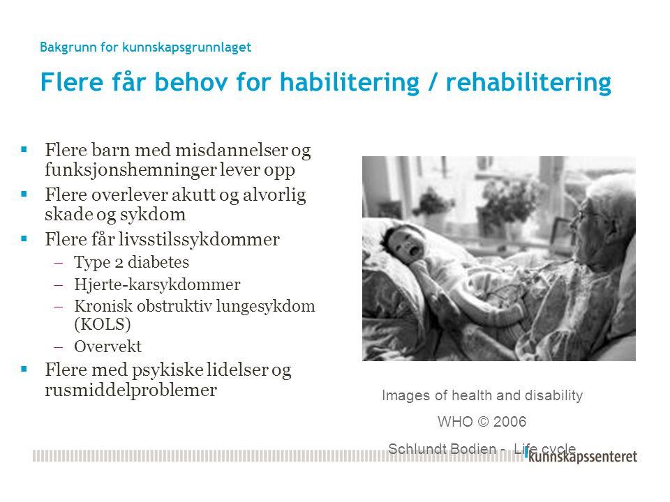 Bakgrunn for kunnskapsgrunnlaget Flere eldre http://www.ssb.no/folkfram