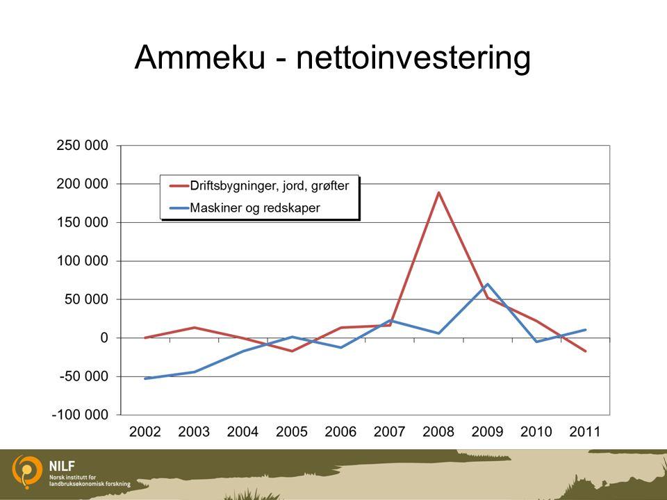 Ammeku - nettoinvestering