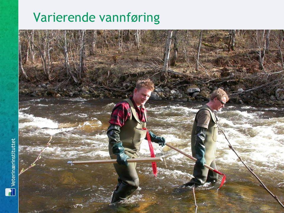 Varierende vannføring