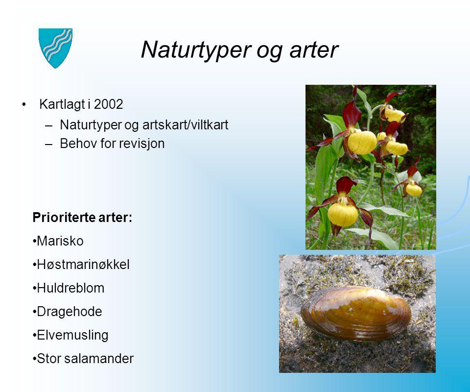 Naturtyper og arter Kartlagt i 2002 –Naturtyper og artskart/viltkart –Behov for revisjon Prioriterte arter: Marisko Høstmarinøkkel Huldreblom Dragehod