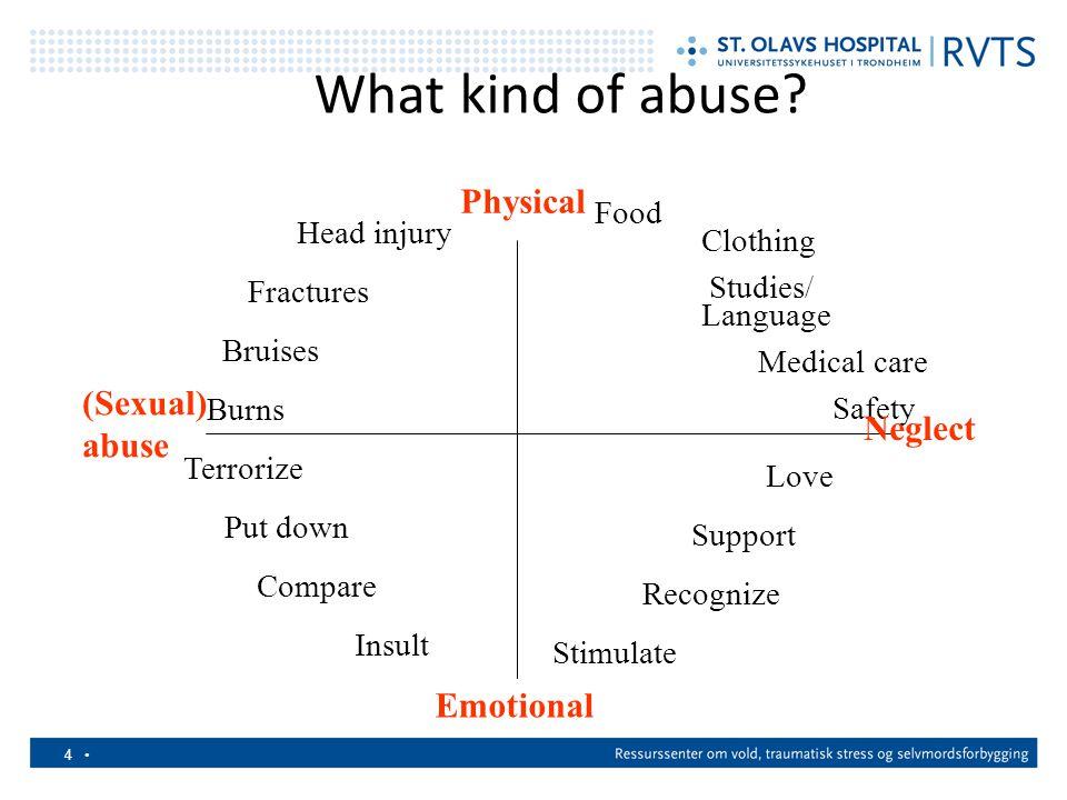 5 Konsekvenser av å leve med vold