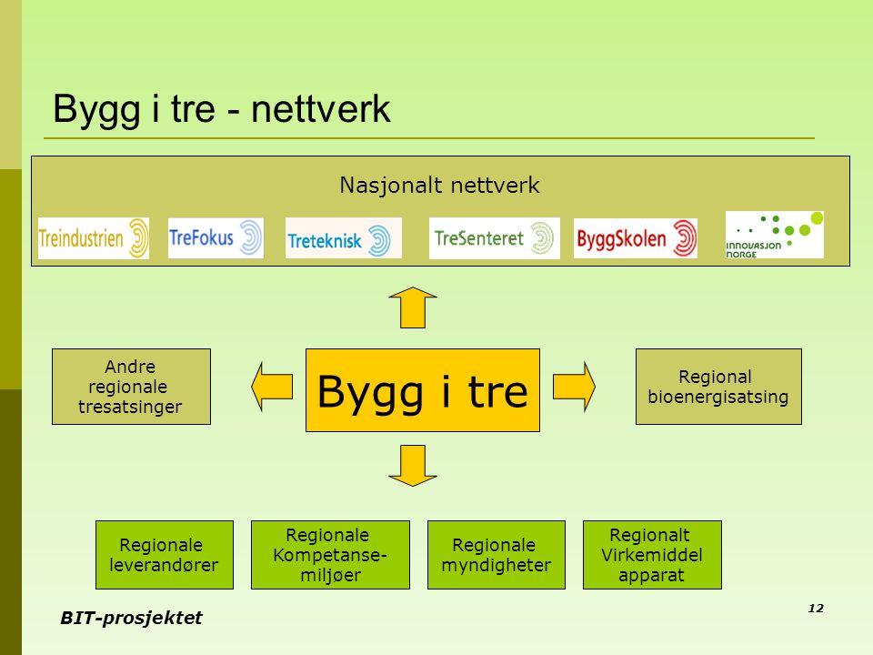 BIT-prosjektet 12 Bygg i tre - nettverk Andre regionale tresatsinger Bygg i tre Nasjonalt nettverk Regionale leverandører Regionale myndigheter Region
