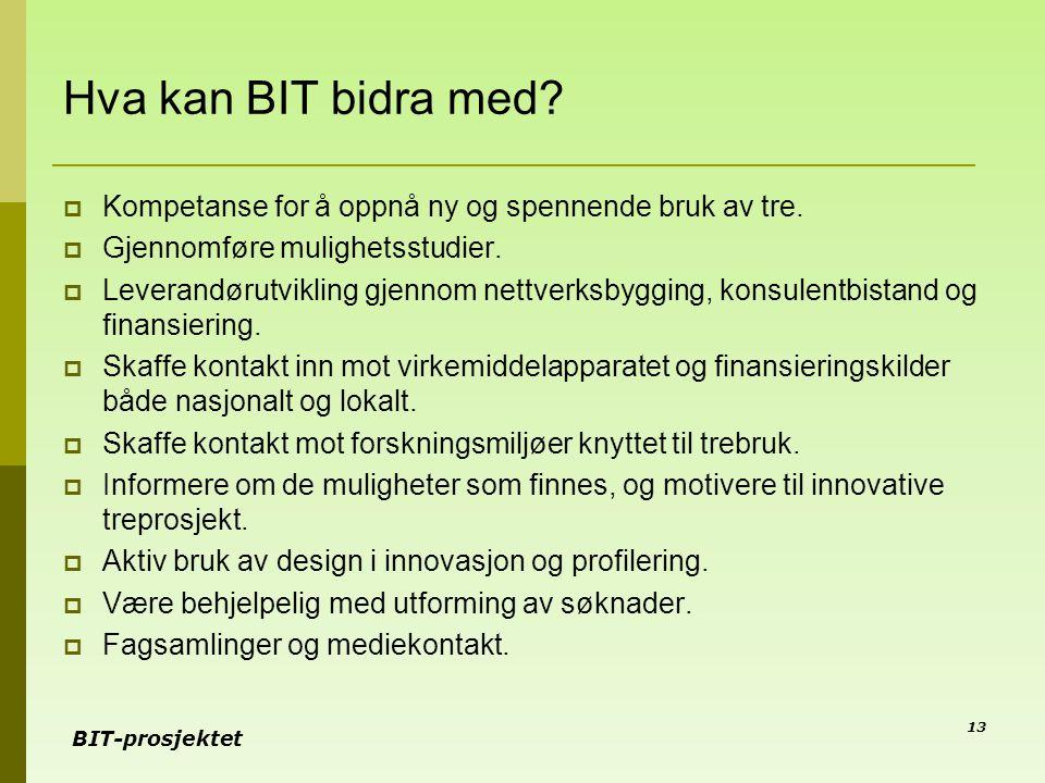 BIT-prosjektet 13 Hva kan BIT bidra med?  Kompetanse for å oppnå ny og spennende bruk av tre.  Gjennomføre mulighetsstudier.  Leverandørutvikling g