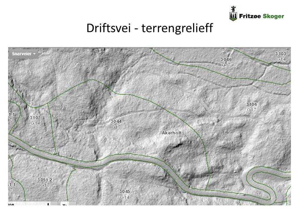 Driftsvei - terrengrelieff