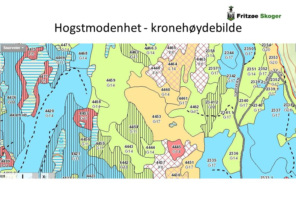 Fritzøe Skogers erfaring - planleggingsdata Ungskogpleie og tynning Enkelttredata fungerer dårlig under 2 m.