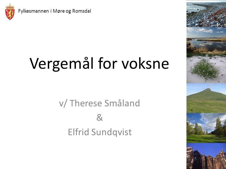 Fylkesmannen i Møre og Romsdal Vergemål for voksne v/ Therese Småland & Elfrid Sundqvist