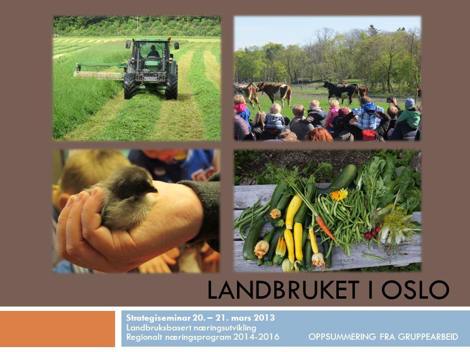 LANDBRUKET I OSLO Strategiseminar 20. – 21. mars 2013 Landbruksbasert næringsutvikling Regionalt næringsprogram 2014-2016 OPPSUMMERING FRA GRUPPEARBEI