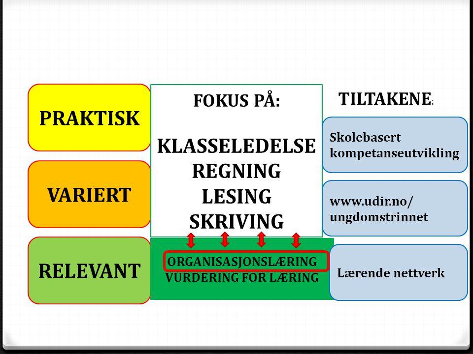 Overordnet plan i Oppland 0 Langsiktighet 2013-2017 0 Før, under og etter en pulje