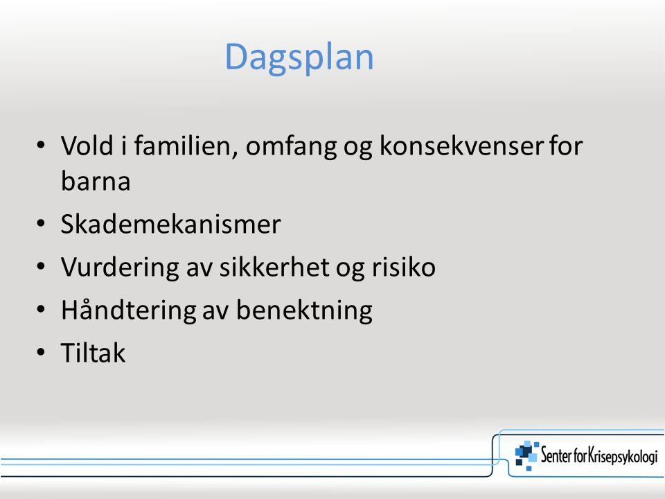 Dagsplan Vold i familien, omfang og konsekvenser for barna Skademekanismer Vurdering av sikkerhet og risiko Håndtering av benektning Tiltak