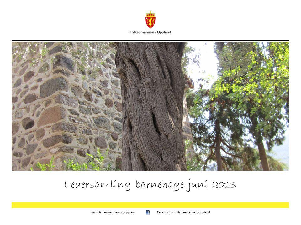 www.fylkesmannen.no/opplandFacebookcom/fylkesmannen/oppland Ledersamling barnehage juni 2013