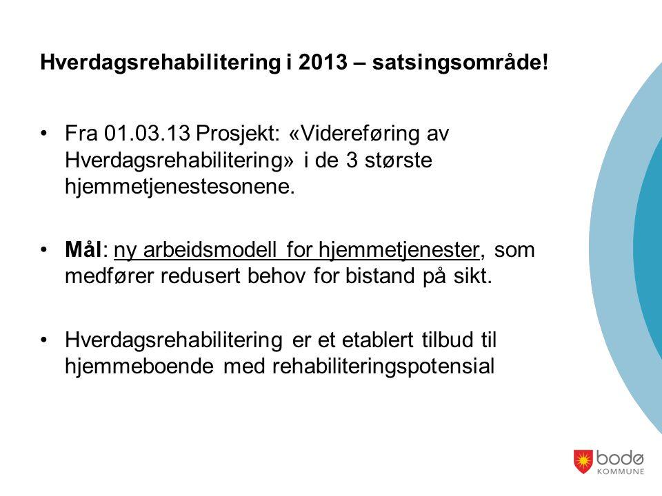 Hverdagsrehabilitering i 2013 – satsingsområde! Fra 01.03.13 Prosjekt: «Videreføring av Hverdagsrehabilitering» i de 3 største hjemmetjenestesonene. M