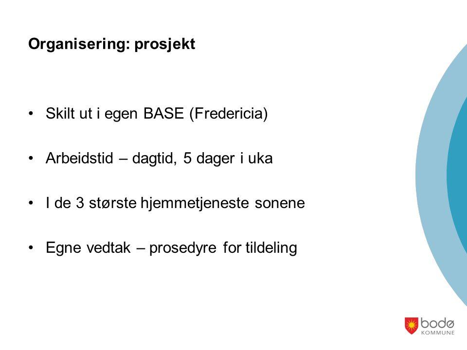 Organisering: prosjekt Skilt ut i egen BASE (Fredericia) Arbeidstid – dagtid, 5 dager i uka I de 3 største hjemmetjeneste sonene Egne vedtak – prosedyre for tildeling