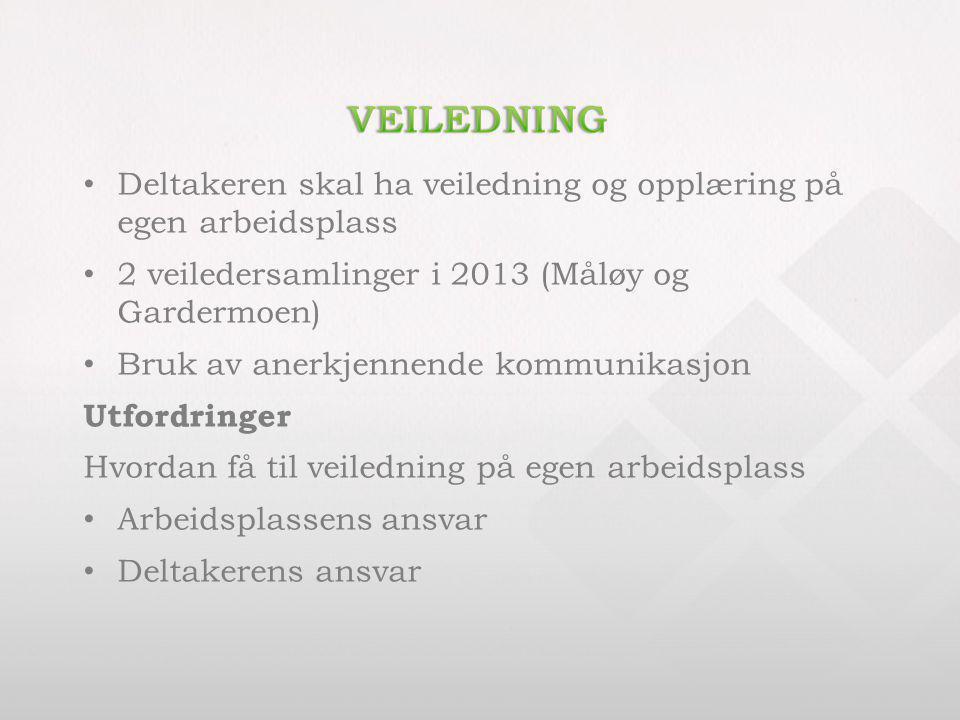 Deltakeren skal ha veiledning og opplæring på egen arbeidsplass 2 veiledersamlinger i 2013 (Måløy og Gardermoen) Bruk av anerkjennende kommunikasjon U