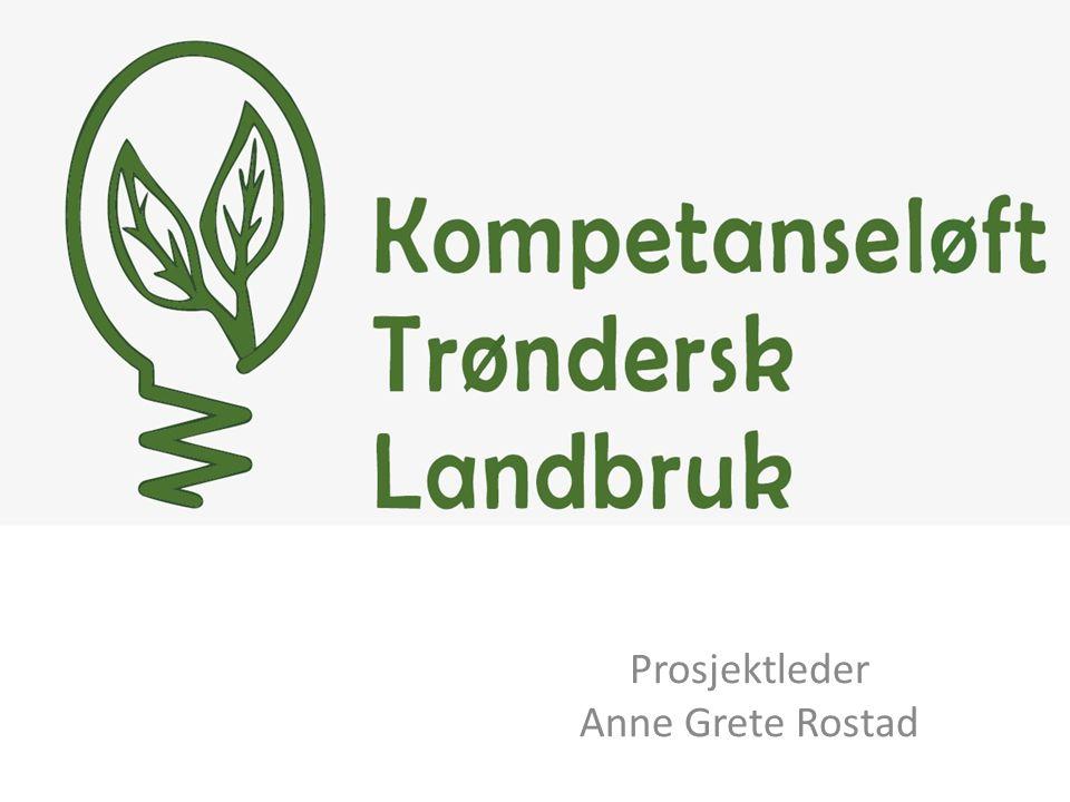 Prosjektleder Anne Grete Rostad