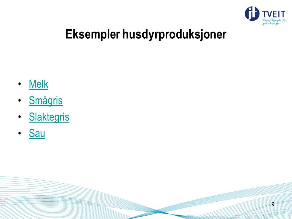 Eksempler husdyrproduksjoner Melk Smågris Slaktegris Sau 9