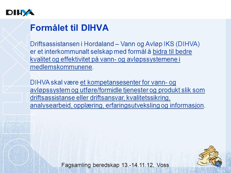 Formålet til DIHVA Driftsassistansen i Hordaland – Vann og Avløp IKS (DIHVA) er et interkommunalt selskap med formål å bidra til bedre kvalitet og effektivitet på vann- og avløpssystemene i medlemskommunene.