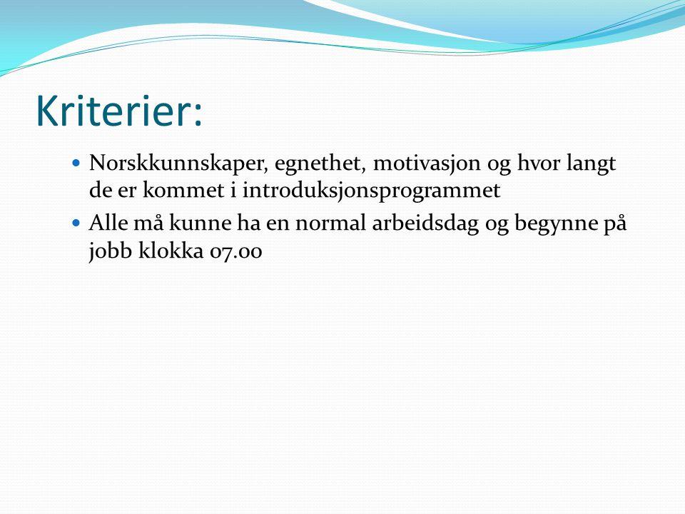 Kriterier: Norskkunnskaper, egnethet, motivasjon og hvor langt de er kommet i introduksjonsprogrammet Alle må kunne ha en normal arbeidsdag og begynne
