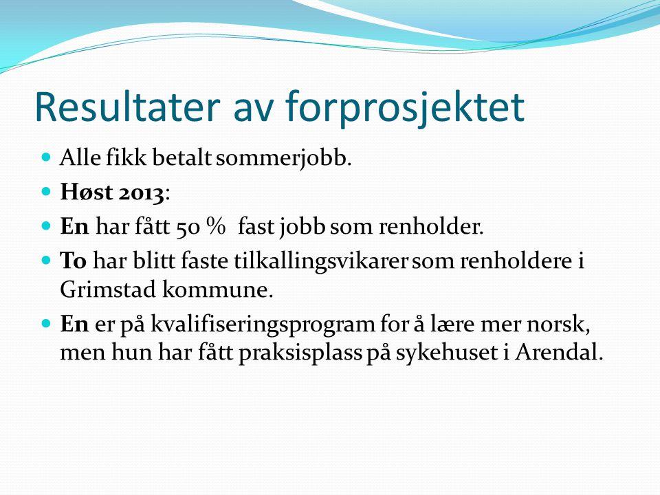 Kommunale innvandrertiltak, 2013 IMDI Sør informerte om en ny tilskuddordning for utviklingsmidler til integreringsfremmende prosjekter.