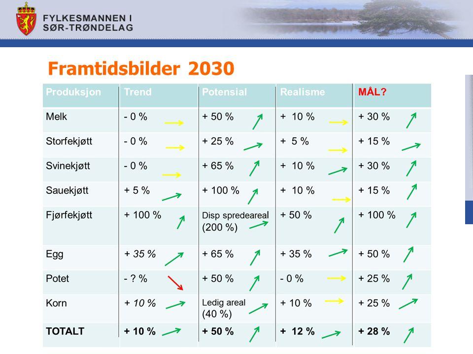 Framtidsbilder 2030