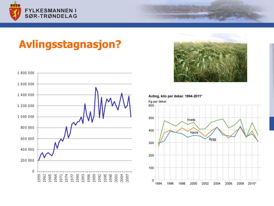 Hva må til for å komme til felles målbilde for matproduksjon i Trøndelag i 2030.