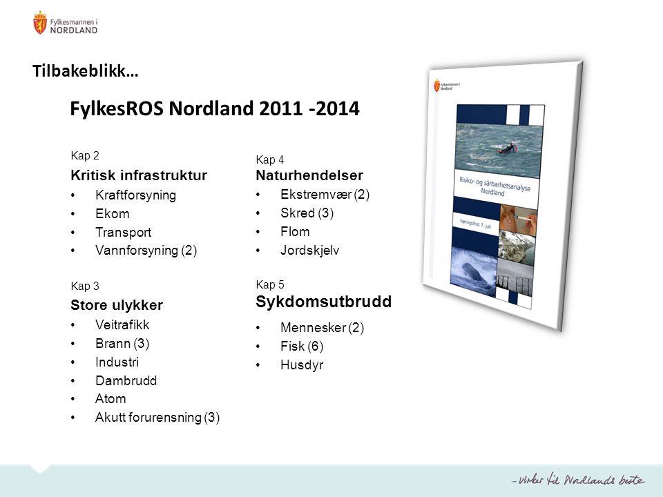 FylkesROS Nordland 17 store risikoområder (totalt 31) Ikke risikomatrise Handlingsplanen Prioriterte risikoområder: 1.Kraftforsyning 2.Ekom Kritisk infrastruktur 3.Vannforsyning 4.Akutt forurensning i sjø 5.Klimaendringer Tiltak Tilbakeblikk…