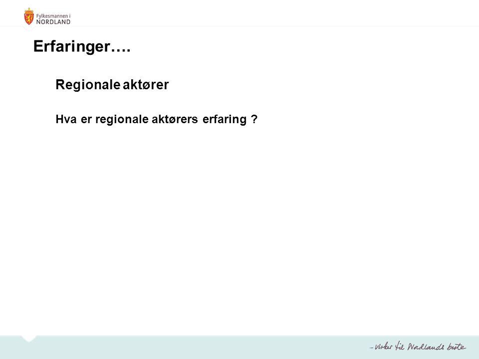 Regionale aktører Hva er regionale aktørers erfaring ? Erfaringer….