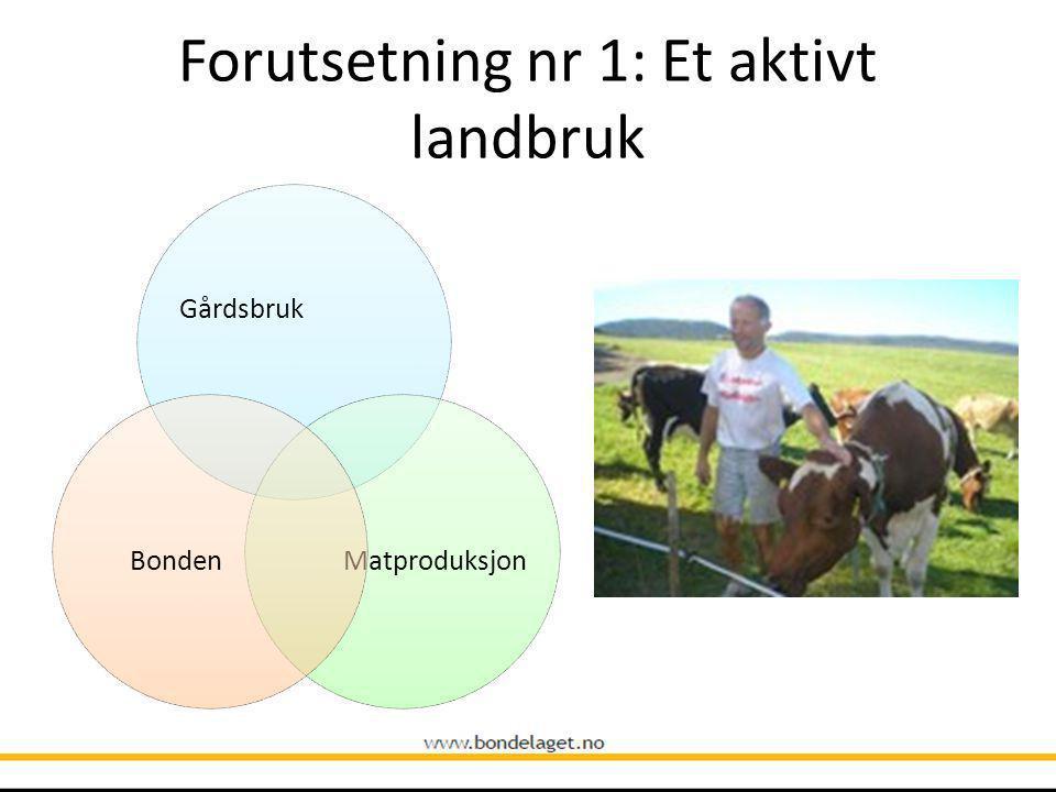 Forutsetning nr 1: Et aktivt landbruk Gårdsbruk MatproduksjonBonden