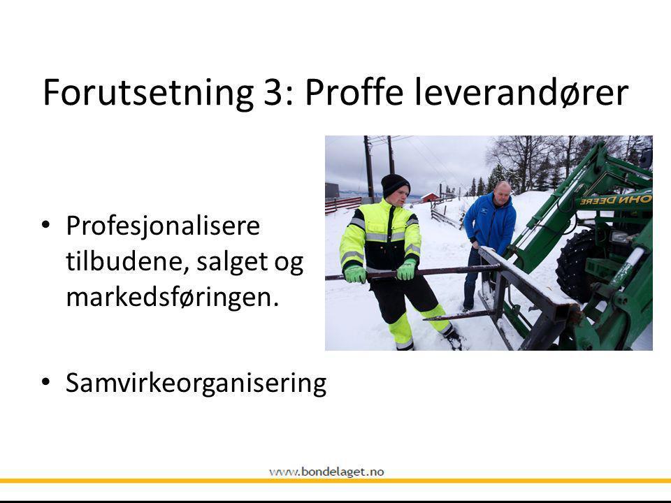 Forutsetning 3: Proffe leverandører Profesjonalisere tilbudene, salget og markedsføringen.