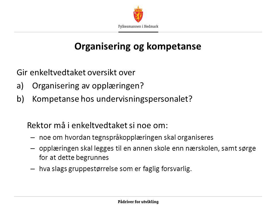 Organisering og kompetanse Gir enkeltvedtaket oversikt over a)Organisering av opplæringen.