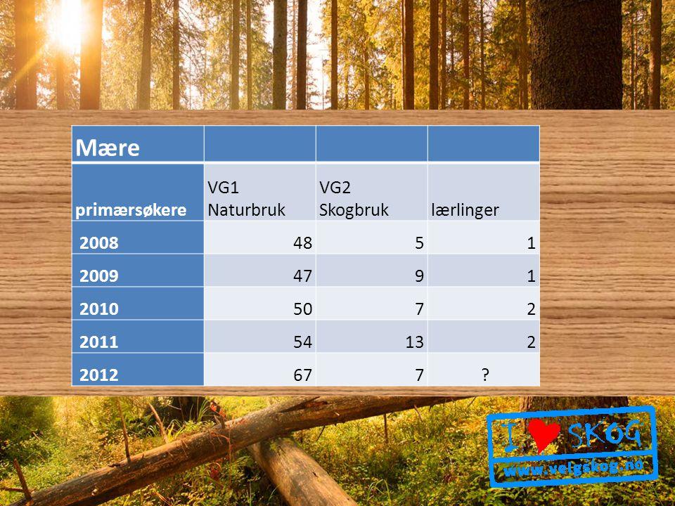Mære primærsøkere VG1 Naturbruk VG2 Skogbruklærlinger 20084851 20094791 20105072 201154132 2012677 ?