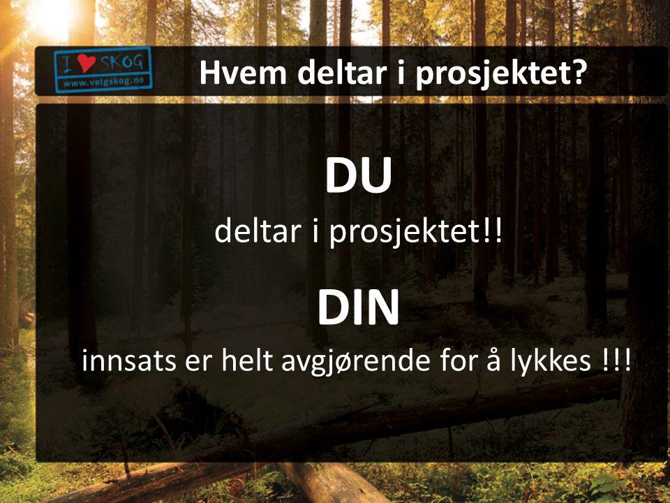DU deltar i prosjektet!! DIN innsats er helt avgjørende for å lykkes !!!! Hvem deltar i prosjektet?