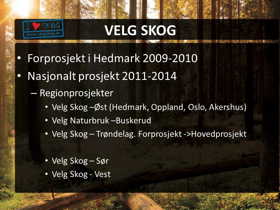 VELG SKOG Forprosjekt i Hedmark 2009-2010 Nasjonalt prosjekt 2011-2014 – Regionprosjekter Velg Skog –Øst (Hedmark, Oppland, Oslo, Akershus) Velg Naturbruk –Buskerud Velg Skog – Trøndelag.
