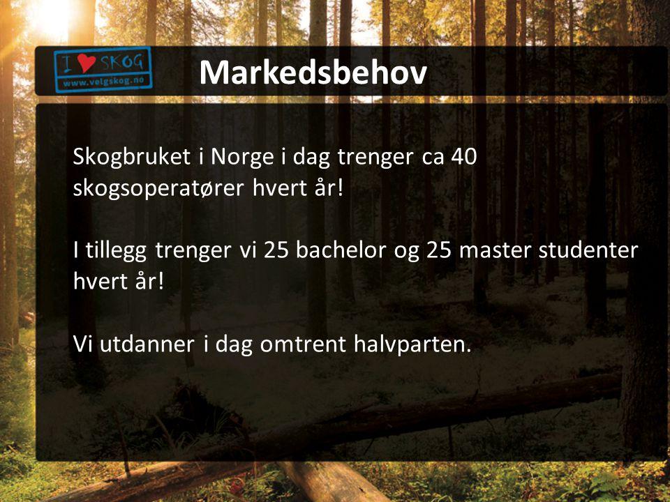 Skogbruket i Norge i dag trenger ca 40 skogsoperatører hvert år.