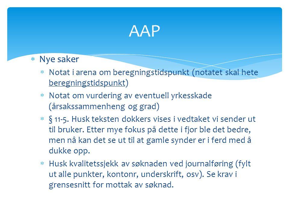 AAP  Nye saker  Notat i arena om beregningstidspunkt (notatet skal hete beregningstidspunkt)  Notat om vurdering av eventuell yrkesskade (årsakssam