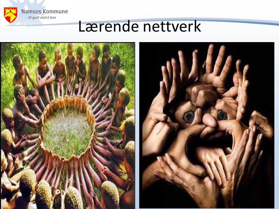 Lærende nettverk