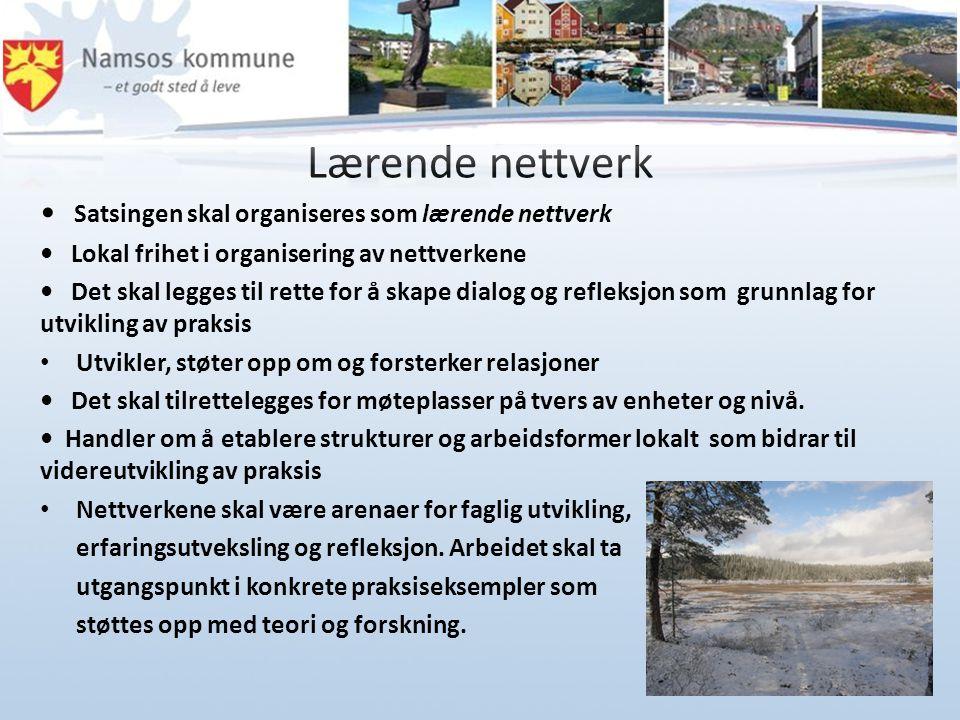 Lærende nettverk Satsingen skal organiseres som lærende nettverk Lokal frihet i organisering av nettverkene Det skal legges til rette for å skape dial
