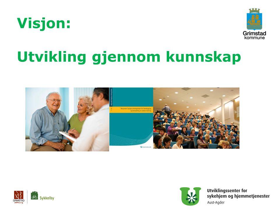 Mål for det enkelte USHT Pådriver for kunnskap og kvalitet i sykehjem og hjemmetjenester i eget fylke 3