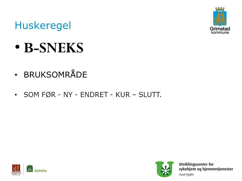 Huskeregel B-SNEKS BRUKSOMRÅDE SOM FØR - NY - ENDRET - KUR – SLUTT. 32