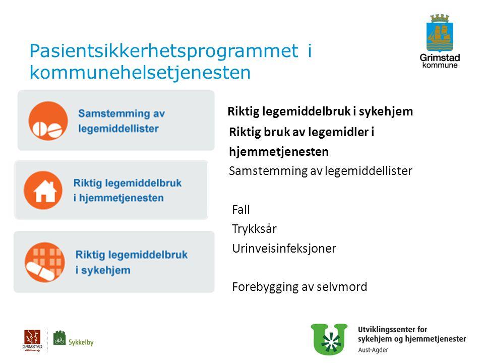 Pasientsikkerhetsprogrammet i kommunehelsetjenesten Riktig legemiddelbruk i sykehjem Riktig bruk av legemidler i hjemmetjenesten Samstemming av legemi
