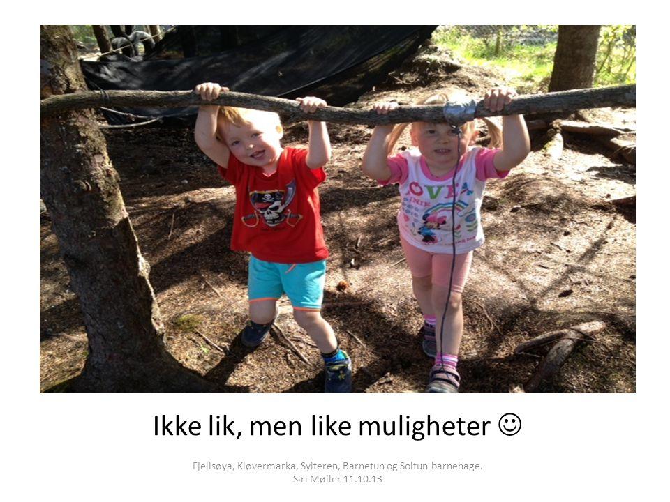 Ikke lik, men like muligheter Fjellsøya, Kløvermarka, Sylteren, Barnetun og Soltun barnehage.