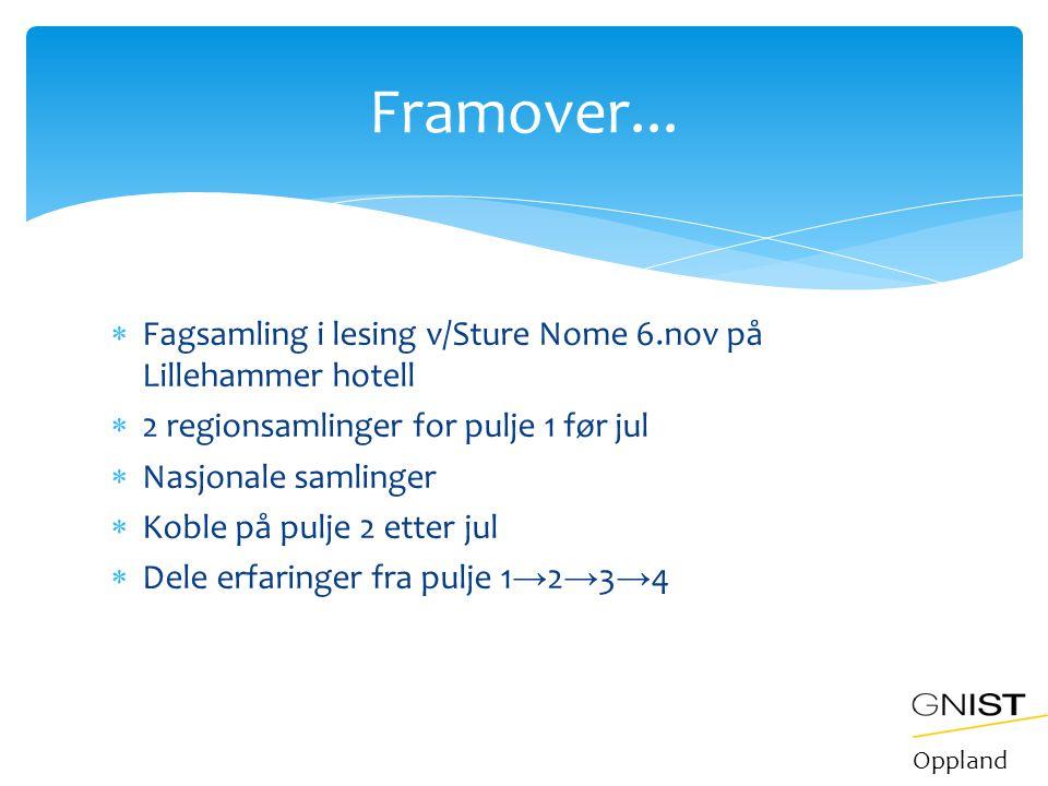  Fagsamling i lesing v/Sture Nome 6.nov på Lillehammer hotell  2 regionsamlinger for pulje 1 før jul  Nasjonale samlinger  Koble på pulje 2 etter