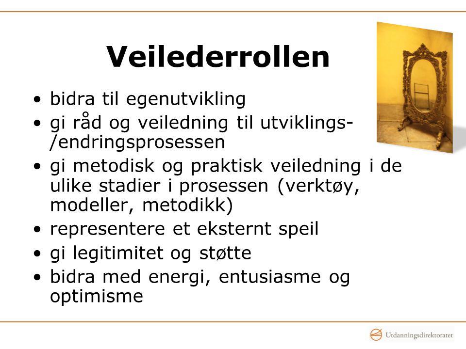 Veilederrollen bidra til egenutvikling gi råd og veiledning til utviklings- /endringsprosessen gi metodisk og praktisk veiledning i de ulike stadier i prosessen (verktøy, modeller, metodikk) representere et eksternt speil gi legitimitet og støtte bidra med energi, entusiasme og optimisme